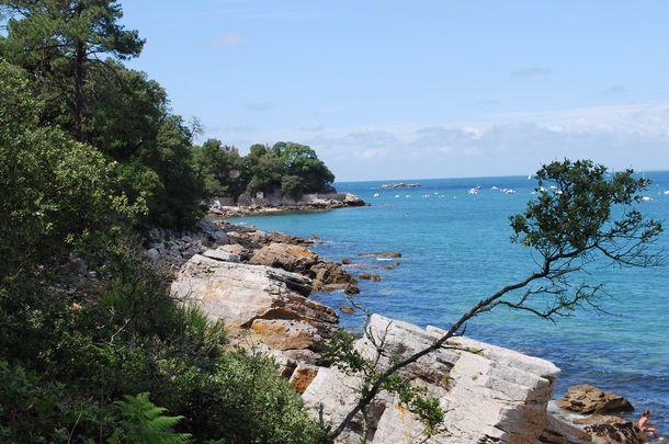 Noirmoutier en ile noirmoutier plus qu 39 une le un for Bois de la chaise noirmoutier