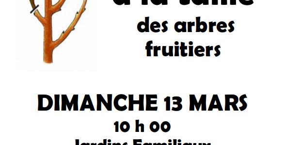 Initiation à la taille dimanche 13 Mars