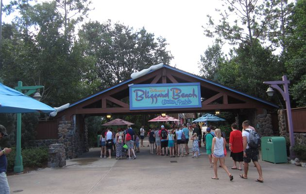 Disney's Blizzard Beach : Water Park
