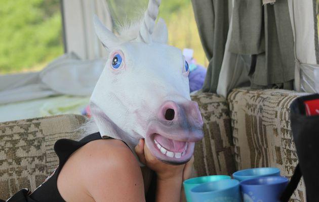 D'où vient cette passion soudaine des internautes pour les masques de chevaux ? - La social NewsRoom