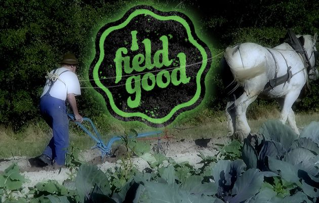 «I field good» : le mouvement citoyen pour une agriculture d'avenir