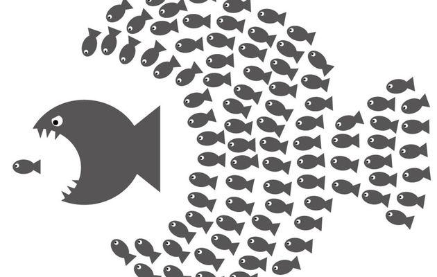 La psychologie des foules ... imprévisibles