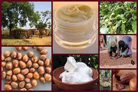 La Côte d'Ivoire relance son Salon de l'agriculture