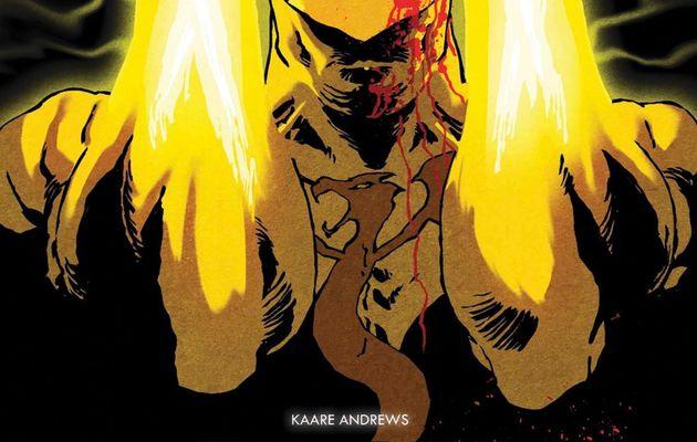 Mon Impression : Iron Fist tome #1
