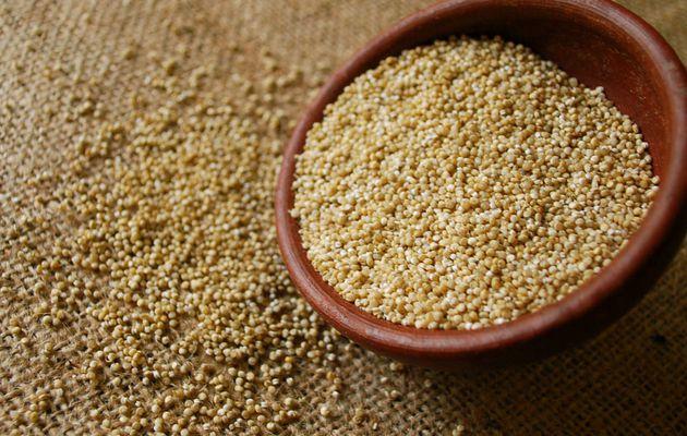 """Le quinoa, """"petit riz du Pérou"""" sans gluten !"""