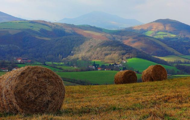 Paysages du Pays Basque http://t.co/2o92nlvtHu