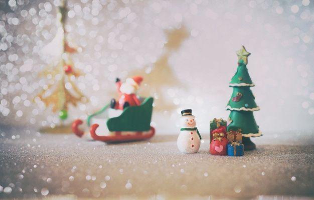 Un Conseil d'Etat devenu expert en décoration de Noël.