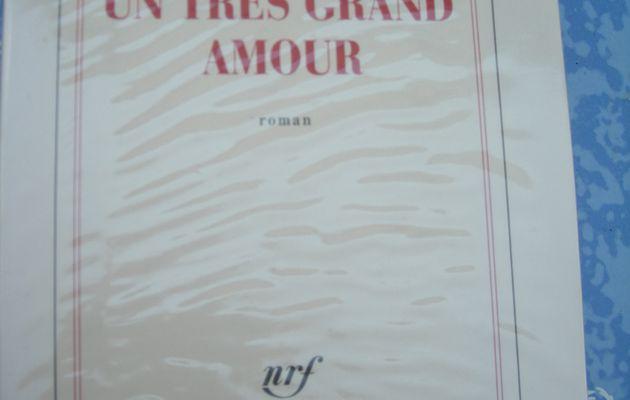 Un très grand amour de Franz-Olivier Giesberg
