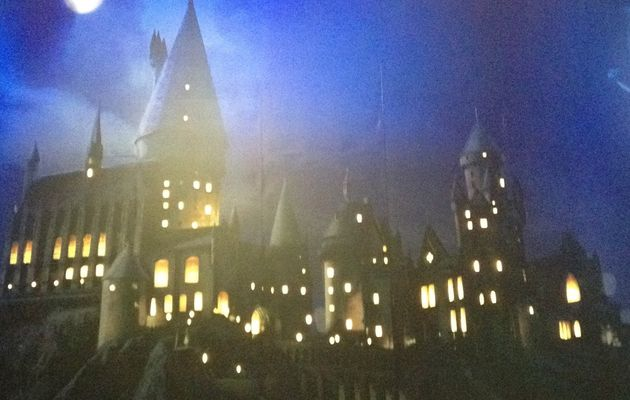 {Culture} L'Exposition Harry Potter