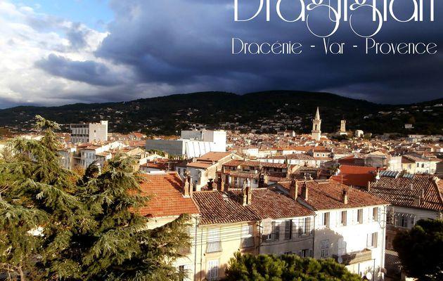 Draguignan - Dracénie - Var - Provence