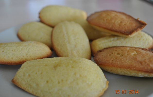Madeleines (les meilleures)♥