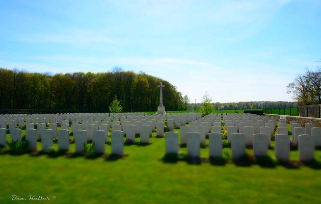 """La Ville-aux-Bois-lès-Pontavert : cimetière britannique de """"La Musette"""""""