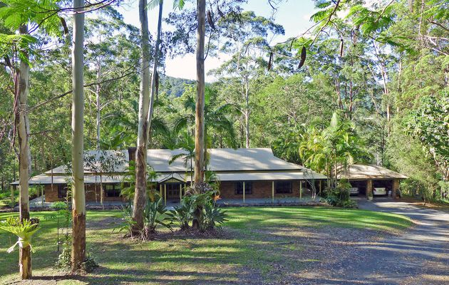 House sitting in Tallebudgera