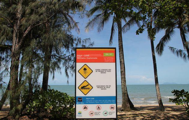 De retour à Cairns