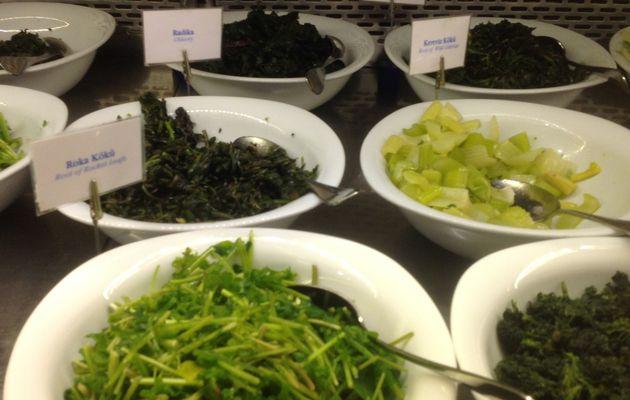 Nature et découverte : assiettes vertes de mezze