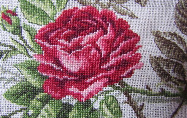 Avancée de la rose...9ème!!