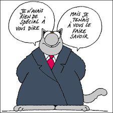 Un chat gris peut cacher une souris