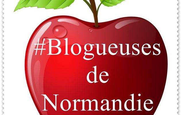 La premiere confrerie cybernetique de blogueuses de Normandie