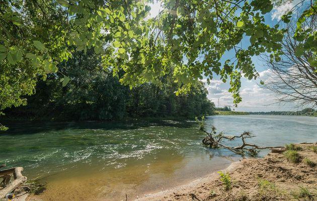 L'origine mirifique de la rivière Loiret.