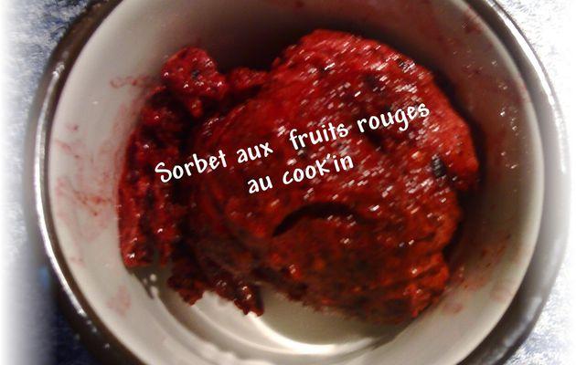 Sorbet au cook'in