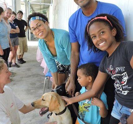 MAX - Labrador sable - 2 ans - adopté avec Prunelle