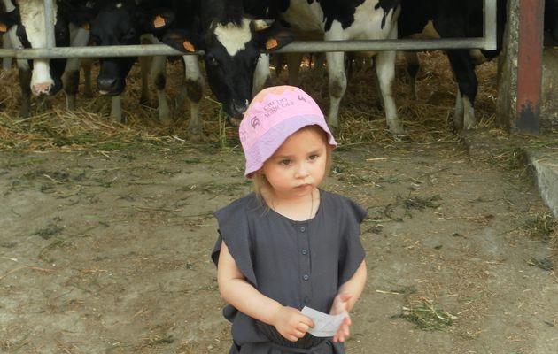 Découverte des animaux de la ferme...