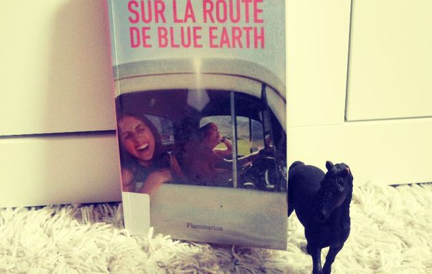 Sur la route de Blue Earth, de Joseph Monninger