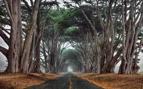 Paysages : Prendre la route