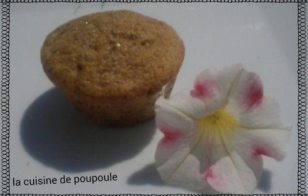 Muffins moelleux aux noisettes et pépites de chocolat sans gluten et sans lactose au thermomix au sans