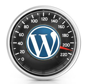 Learn The Nature Of Client Side And Server Side In WordPress