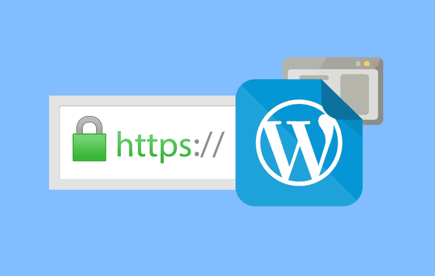 Importance Of SSL Certificate For Your WP Website