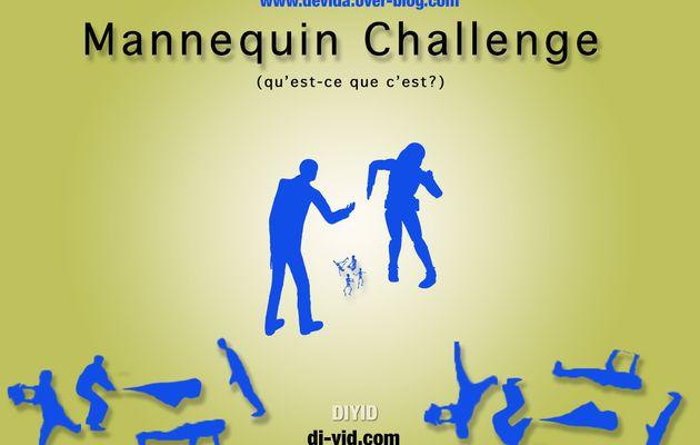 Tout savoir sur le Mannequin Challenge