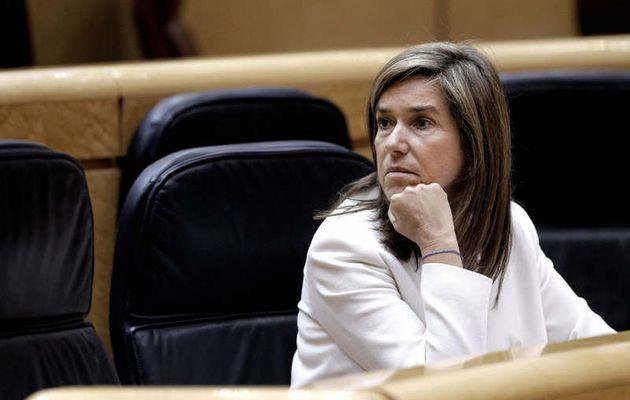 Ana Mato pidió en 2009 a Carme Chacón que dimitiese por un brote de gripe porcina