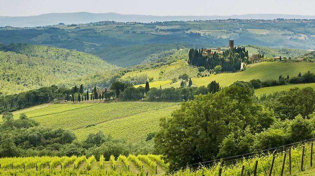 L'Italie reprend à la France son titre de numéro un du vin