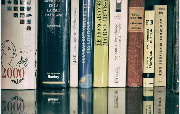 """#Projet365 - Jour 29 - """"Dictionnaires et Manuels"""""""
