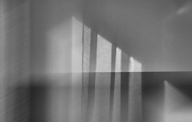#MonProjet365 - Jour 170 - Stries, Traces de Lumière...