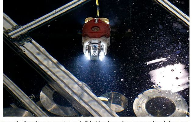 Sunfish robot for Fukushima plant