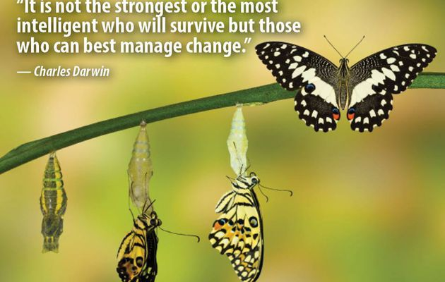 Who can manage the change
