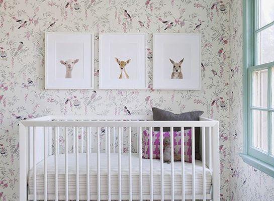 Chambres d'enfants : Des oiseaux sur les murs
