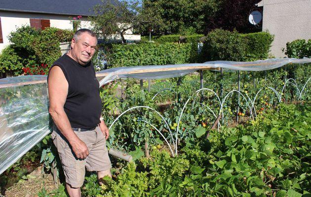 La bonne santé des Tomates de Jean-Pierre Borderon