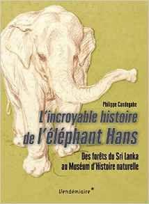 L'incroyable histoire de l'éléphant Hans