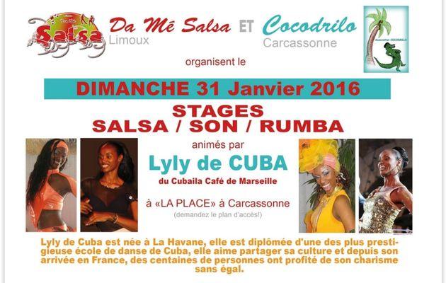 Stage SALSA 31 janvier 2016