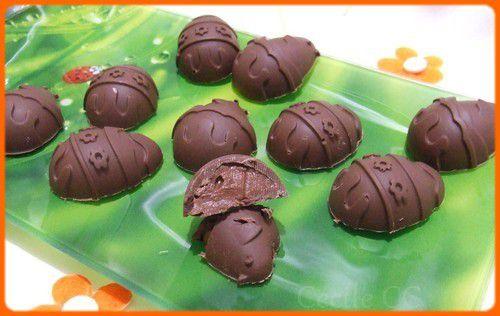 Recette de chocolats au lait fourrés ganache chocolat lait/fruits de la passion...