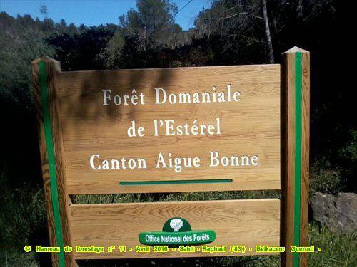 hameau de forestage n° 11 Saint-Raphaël (83)