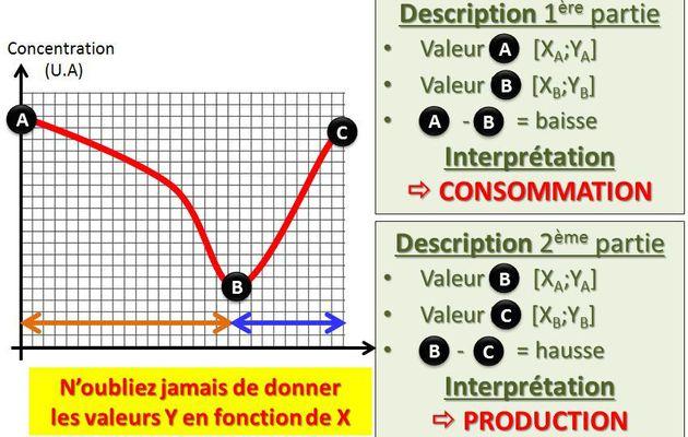 Analyser un graphique