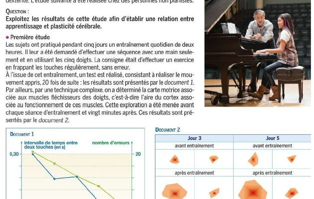 TS apprentissage du piano (type 2b)