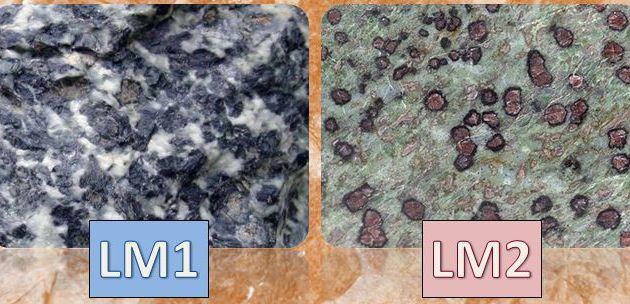 TS_TP21 : Les roches du Queyras, témoins d'une subduction passée