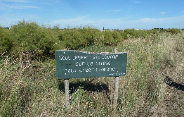 Les salines d'Olonne sur mer (2) : Le parcours historique du sel
