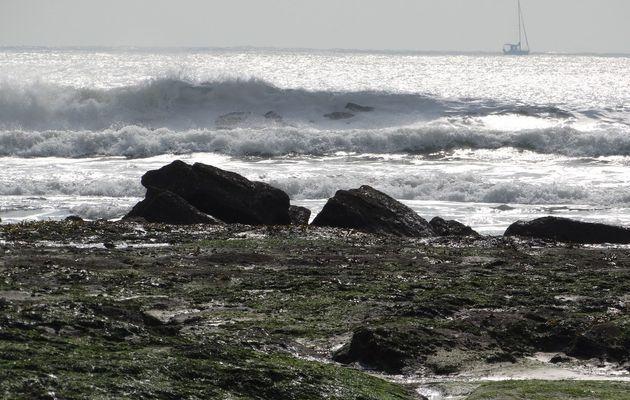 Vagues sur la plage des Sables d'Olonne