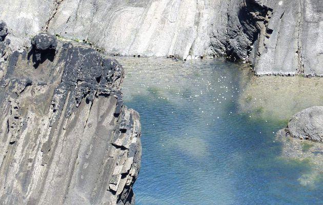 Camaïeu de bleu et gris sur la côte sauvage